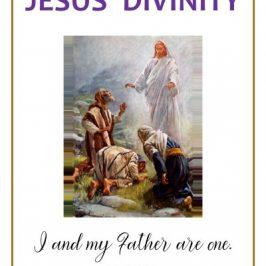 jesus divinity