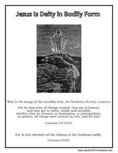 jesus is deity in bodily form